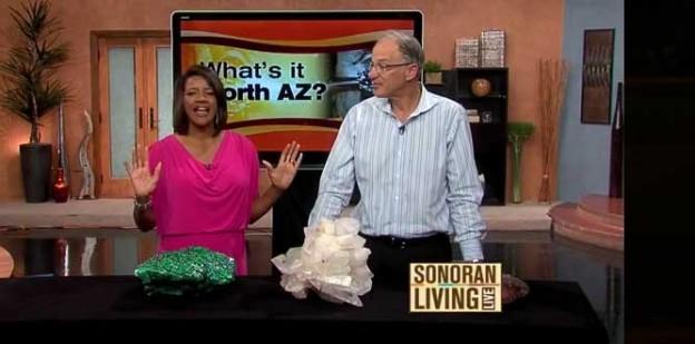 Sonoran Living - Biltmore loan's David Goldstein