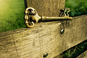 Why insure your antiques