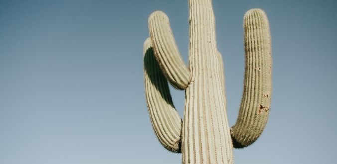 How to Care for Jewelry in Arizona's Hot Weather